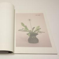 Scherer_Studies-01a