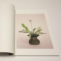 Scherer_Studies-01b