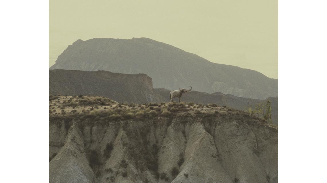 Deserto di Tabernas, Andalusia. Novembre 2011