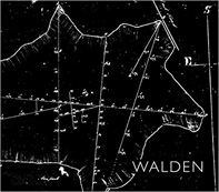 Walker_Walden